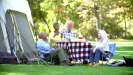 Two Senior Couples Enjoying Camping Holiday In Countryside video