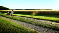 Two small boys play on a country road. video