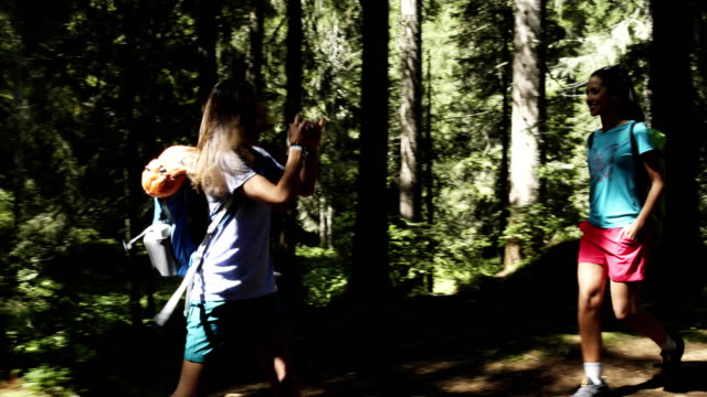 Two smiling women friends walking in sunny forest woods. Group of friends summer adventure journey in mountain nature outdoors. Travel exploring Alps, Dolomites, Italy. 4k slow motion 60p video video