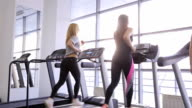 Two sportive women do exercises in gym in day time video
