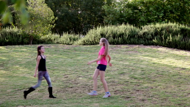 Two teen friends' happy meeting in the park video