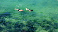 Two tourists snorkeling sea surface video