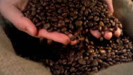 Two videos of checking coffee beans in real slow motion video