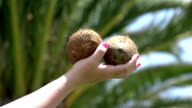 Two videos of hand holding coconuts in real slow motion video