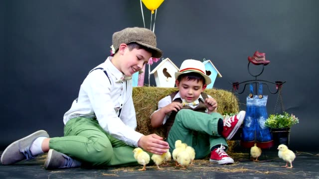 Two village, stylishly dressed boys play with ducklings and chickens, in the background a haystack, colored bird houses, balloons and flowers video