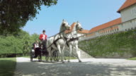 DS Two white horses pulling carriage along a castle video