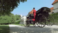 DS Two white horses pulling a carriage by a castle video