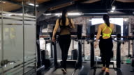 Two women warm up in running machine in gym. View from back video