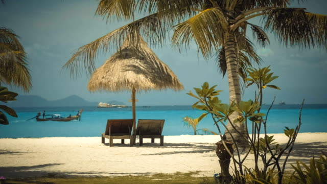 Two wooden lounge chairs under palm tent on beach video