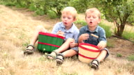 Two young boys eating blueberries video