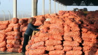 Two Young Farmers in Agricultural Warehouse video