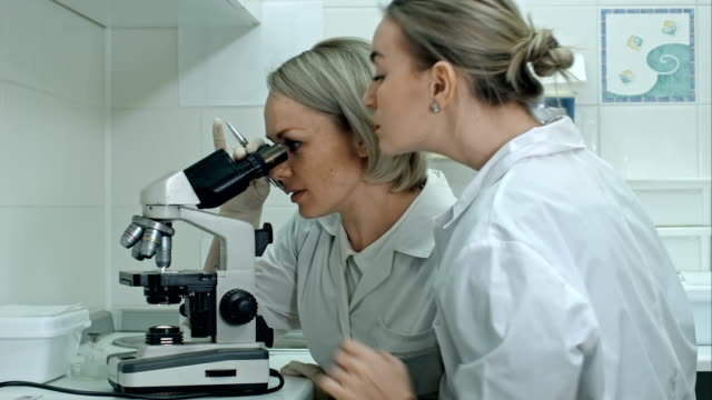 Two young female scientists writes report in modern laboratory, using microscope and making notes video
