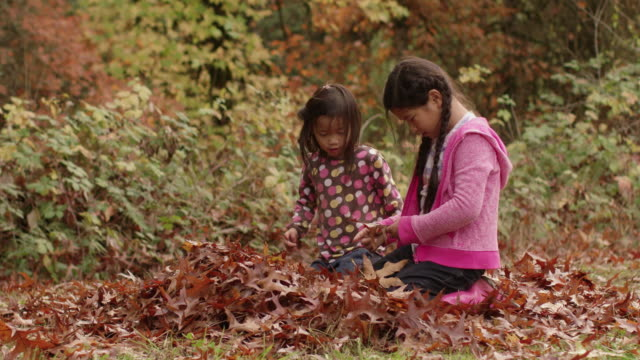 Two young girls in Fall look at pile of leaves video