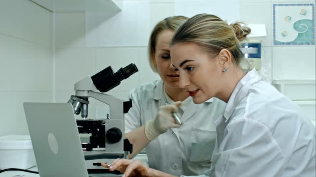 Two young laboratory technician with laptop and a microscope in the laboratory video