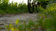 Two young man riding bikes through path on the field. Friends cycling through a field road in summer. video