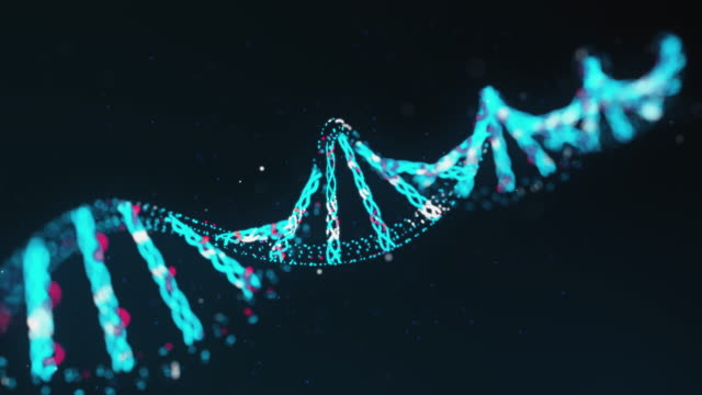Two-Stranded DNA Molecule video