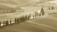 typical tuscany countryside landscape with cypresses video