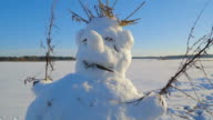 Ugly snowman with twigs on the head video