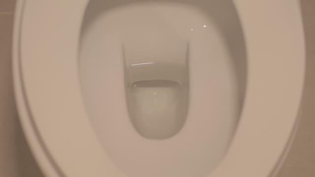 UHD/4k Apple ProRes (HQ) : Toilet bowl. video