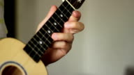 Ukulele Musical Instrument video