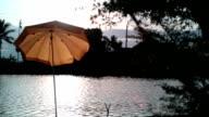 Umbrellas. video