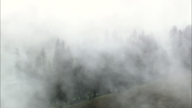 Under And Over Morning Mist  - Aerial View - Wyoming, Park County, United States video