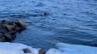 Underwater diver swims near icy river bank. Scuba diver in winter river. video