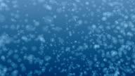 Underwater Flow of Bubbles video