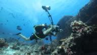 underwater photographer with flashlight video