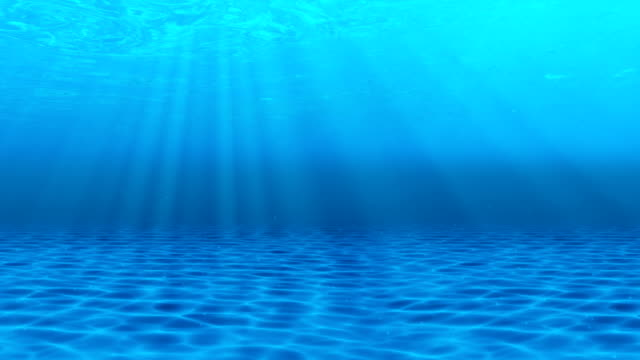 Underwater sceen. Check out my other underwater and seascape animations video