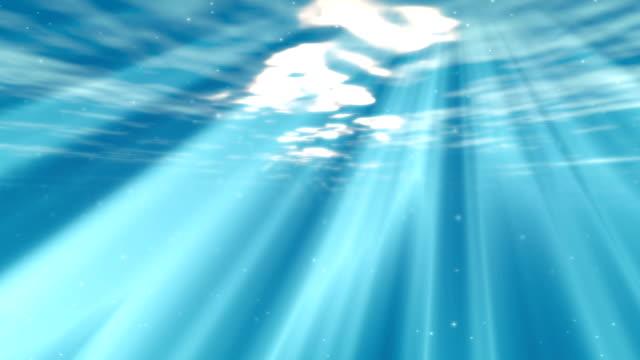 Underwater scene video