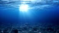 Underwater scene. video