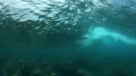 Underwater Surfer Behind Wave video