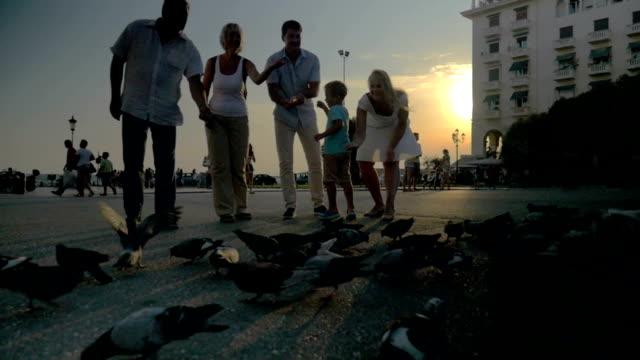 United Family Feeding Pigeons on the Street video