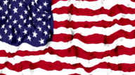 United States of America Flag. video