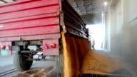 Unloading Corn into the Grain Silo video