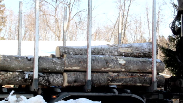 Unloading smaller logs by threes video