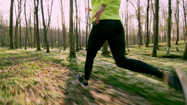 SLO MO TS Unrecognizable woman jogging in a forest video