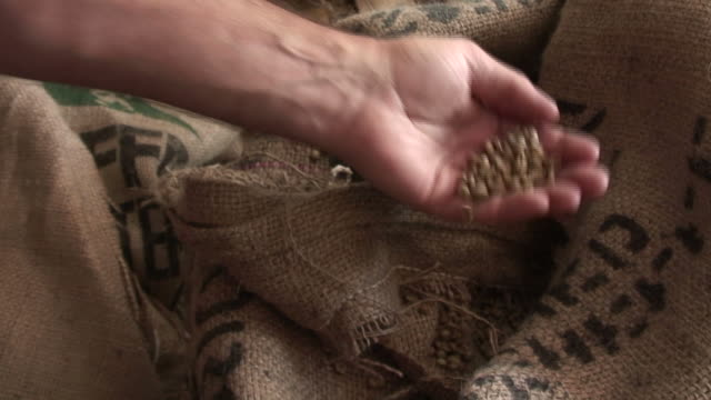 Unroasted Fresh Coffee video