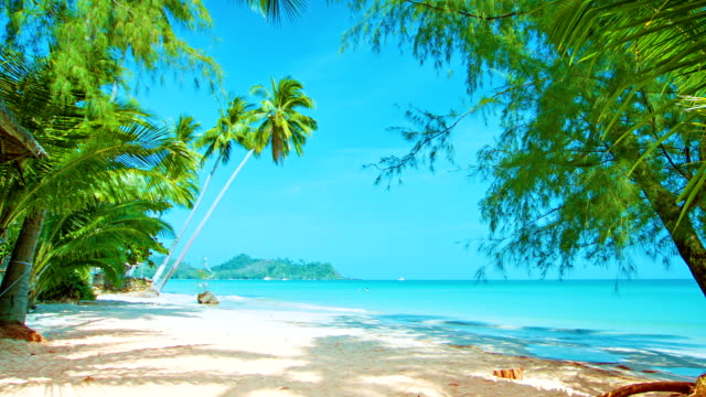 Untouched  beach video