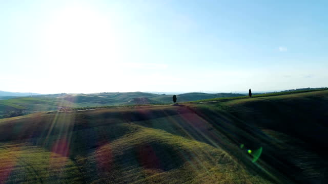 Up aerial view of green wheat rural fields hills with sun. Nature outdoors travel destination Val d'Orcia, Tuscany, Italy. Daylight sunny summer or spring. 4k drone video shot video