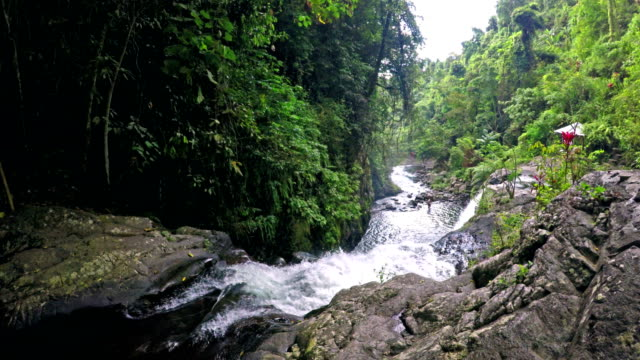 Up view of Aling aling waterfall in Bali Indonesia. video