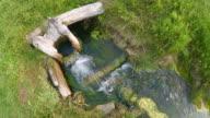 Up view of creak flowing in green fresh grass video