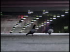 Urban Contrast: Pigeon Playground video