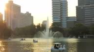 Urban park (Lumpini Park) in Bangkok video