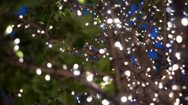urban trees decorated with christmas lights. City night light for holiday. Blue magical christmas and new year decoration video