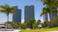 Usa miami downtown summer day palm park yacht bay 4k florida video