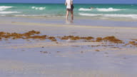 Usa summer day miami beach ocean shore 4k florida video