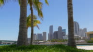Usa summer day palm park miami downtown panorama view 4k florida video