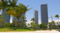 Usa sunny day miami downtown museum palm bay park panorama 4k florida video